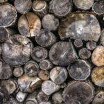 Les chaudières à bois : tout ce qu'il faut savoir pour bien choisir